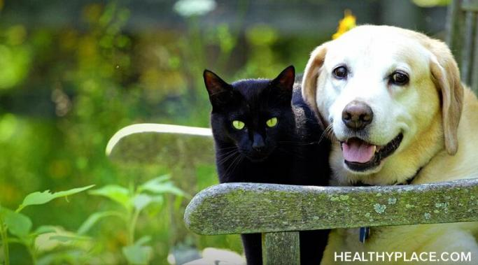 Pets help with anxiety and depression, even for those who have dissociative identity disorder. Learn how pets can help with depression and anxiety at HealthyPlace.