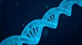 New research reveals common genetic risk factors of bipolar disorder and schizophrenia.
