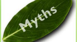Six myths surround stress. Dispelling them enables us to understand our problems and then take action against them. Read about these myths here.