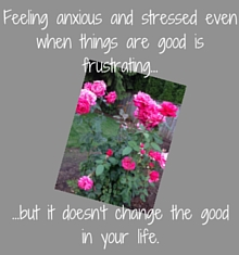 It's frustrating when we feel stressed and anxious even when things are good. Learn how to deal with stress and anxiety in good times. Read these four tips.